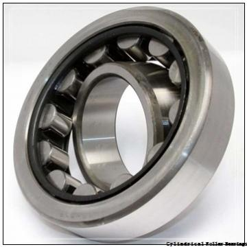 3.346 Inch | 85 Millimeter x 7.087 Inch | 180 Millimeter x 2.362 Inch | 60 Millimeter  CONSOLIDATED BEARING NUP-2317E  Cylindrical Roller Bearings